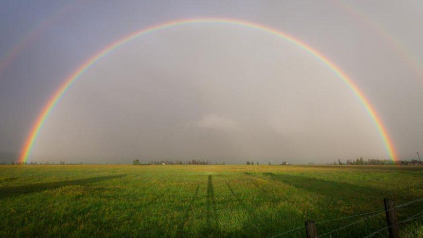 Eat a Rainbow!