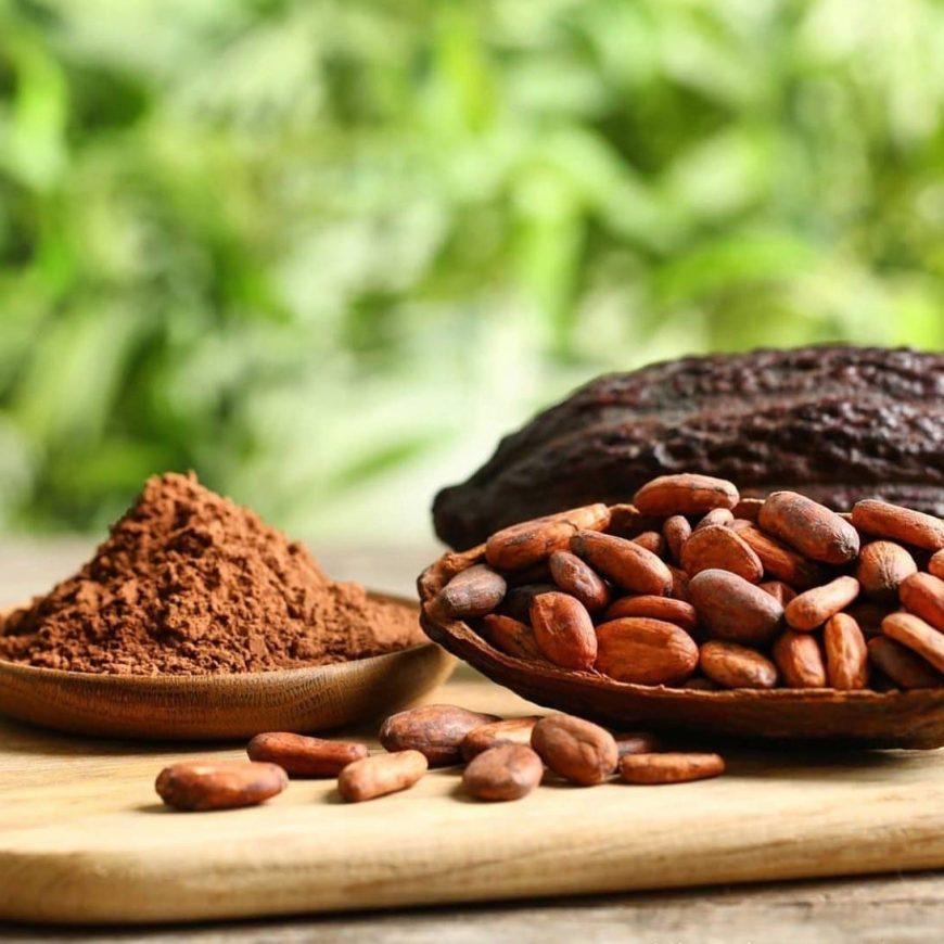 Happy World Chocolate Day!